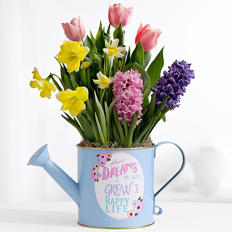 Funky picture of spring flowers bouquet elaboration best evening news creative 360 mightylinksfo